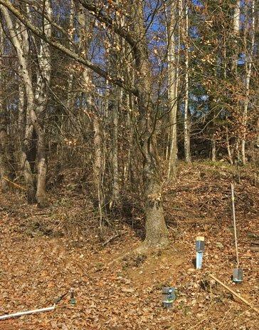 In der Nähe zur Eiche (Strahlungssucher) werden verstellbare Einschlagbolzen gesetzt