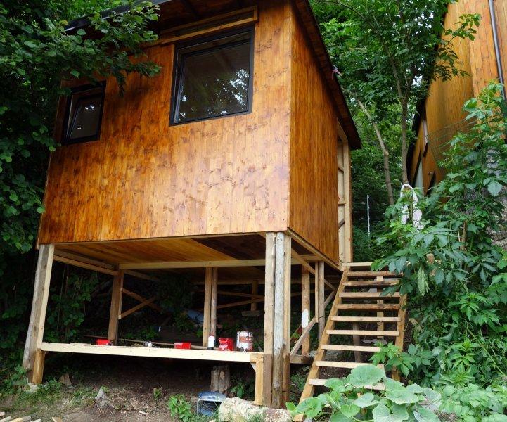 Holzhütte im Urwald