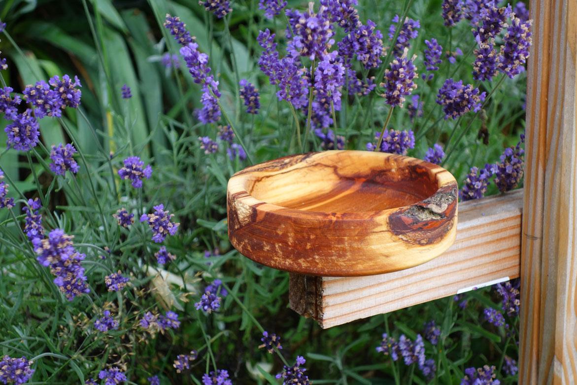 Schön angefeuerte Schale aus unbekanntem Holz