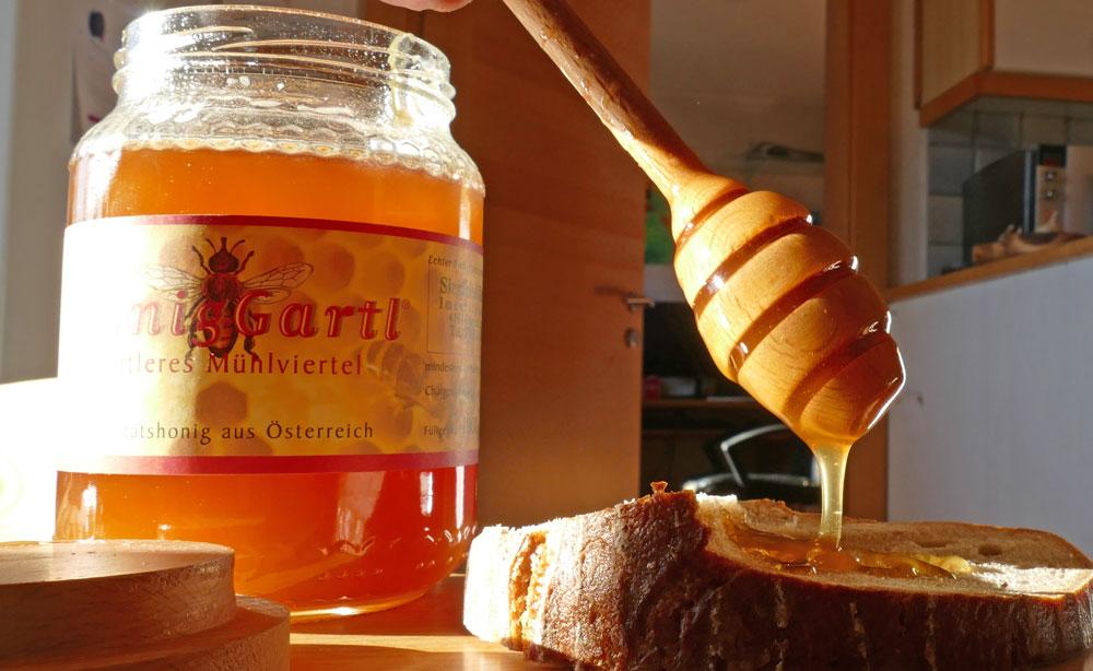 Honig-Dipper im Einsatz