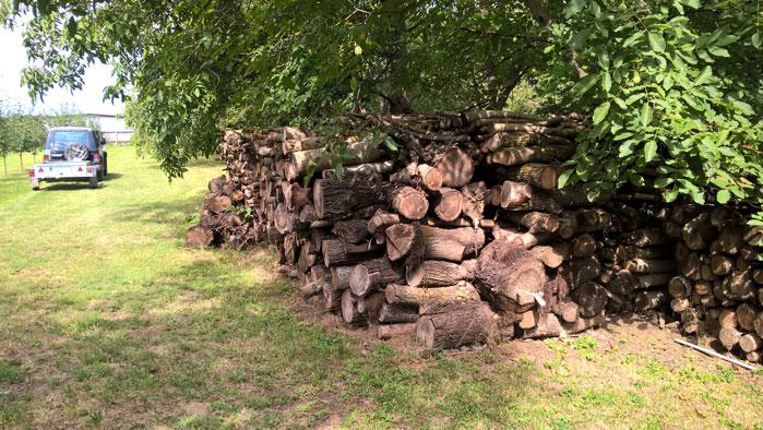 Brennholz Lager
