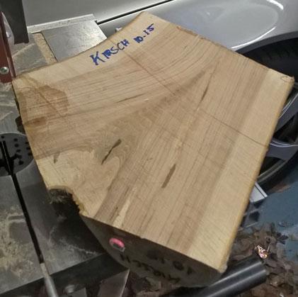 Ausgangsmaterial ist eine Astgabel aus Kirschenholz
